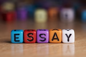 custom essay writing service that delivers com essay writing service